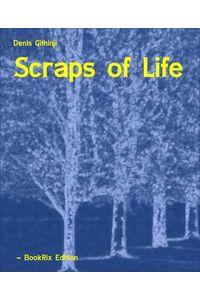 bw-scraps-of-life-bookrix-9783864796494