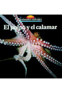 bw-el-pulpo-y-el-calamar-parramon-paidotribo-9788499103327