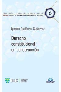 bm-derecho-constitucional-en-construccion-derecho-global-editores-9786079783037