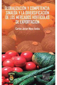 bm-globalizacion-y-competencia-plaza-y-valdes-9786074029178
