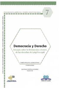 bm-democracia-y-derecho-derecho-global-editores-9786079814861