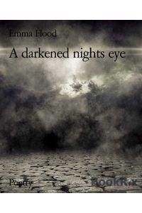 bw-a-darkened-nights-eye-bookrix-9783743820555