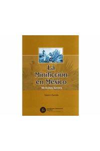 15_la_minificcion_en_mexico