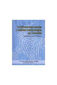codificaciones_penales_realidad_usto