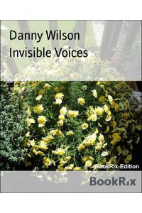 bw-invisible-voices-bookrix-9783736887466