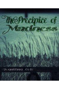 bw-the-precipice-of-madness-bookrix-9783739658742