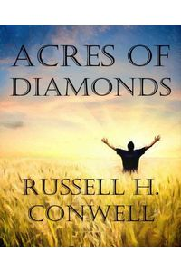 bw-acres-of-diamonds-bookrix-9783736816695