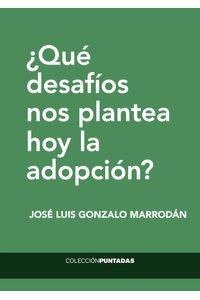 bm-que-desafios-nos-plantea-hoy-la-adopcion-el-hilo-ediciones-9788494733895