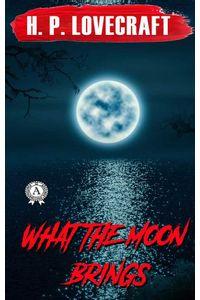 bw-what-the-moon-brings-strelbytskyy-multimedia-publishing-9783969532218