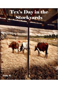 bw-big-tex-amp-friends-texs-day-at-the-stock-yards-bookrix-9783748763147