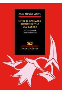 bw-entre-el-cacharro-domeacutestico-y-la-viacutea-laacutectea-renacimiento-9788484728870