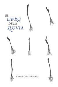 bm-el-libro-de-la-lluvia-padilla-libros-editores-y-libreros-9788484346579