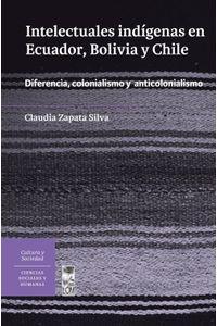 lib-intelectuales-indigenas-en-ecuador-bolivia-y-chile-ebooks-patagonia-9789560009401