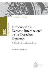 lib-introduccion-al-derecho-internacional-de-los-derechos-humanos-ebooks-patagonia-9789561420267
