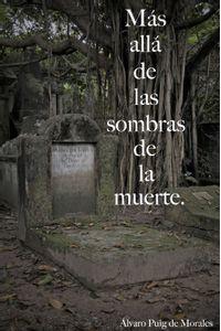 lib-mas-alla-de-las-sombras-de-la-muerte-lvaro-puig-9788490152782