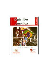 208_opinion_juridica_udem